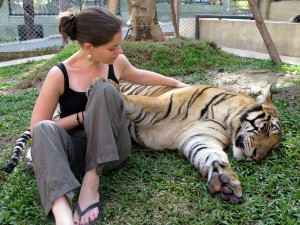 Jodi's own photo of her and a Tiger in Chiang Mai, Thailand