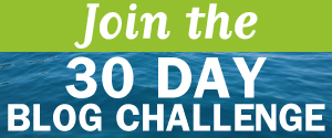 Join Natalie Sisson's 30 Day Blog Challenge