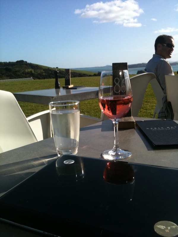 Cable Bay Rose with Waiheke Island in the background