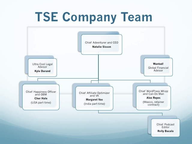 TSE 2013 Complete Company Plan And Vision